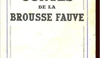 Contes et Légendes : L'origine des contes